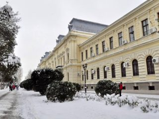 City Hall Pozarevac (10)