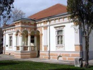 Narodni Muzej Pozarevac TOG (4)