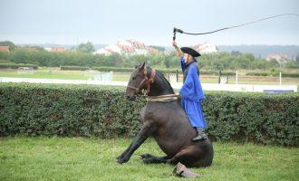 Чикоши из Мађарске на 54. Љубичевским коњичким играма